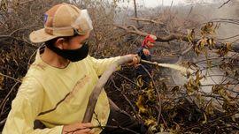 Cegah Kebakaran, BPDP Sawit Siapkan Program Desa Tanggap Api