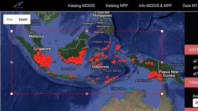 Kebakaran Hutan Meluas ke Maluku-Papua, Titik Api Tembus 3000