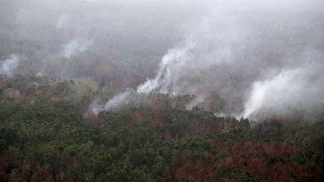 Ada Empat Titik Api, Jalur Pendakian Argopuro Masih Ditutup