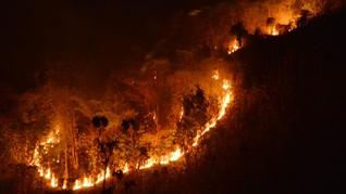 Kebakaran di Gunung Lawu Meluas, Pendakian Resmi Ditutup