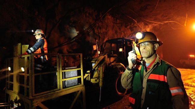 Tagih Smelter, Pemerintah Bisa Cabut Izin Ekspor Freeport