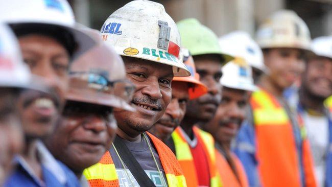 BPK Usul Saham Freeport untuk Papua Dibayar dari Dividen