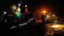 Freeport Didenda Rp460 Miliar Gunakan Lahan Hutan Tanpa Izin