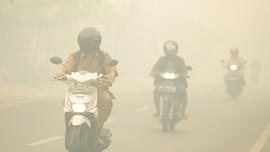 Kebakaran Hutan dan Lahan, Kabut Asap Selimuti Meulaboh