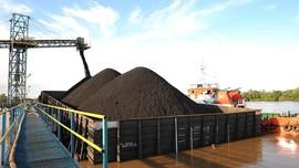 Pengusaha Semringah Harga Khusus DMO Batu Bara PLN Dibatalkan