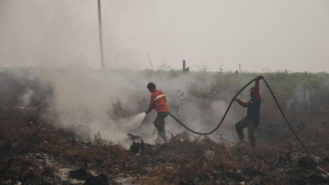 Polri Limpahkan Berkas Tersangka Korporasi Pembakar Hutan