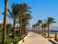 Tiket dan Paket Wisata Sharm el-Sheikh Dijual Murah