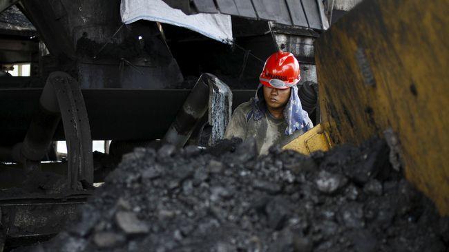 Sektor Minerba Setor Rp40,6 Triliun ke Kantong Negara