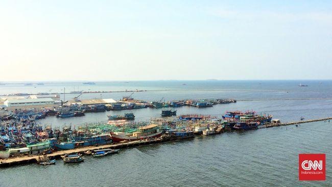 Ahok: Ikan di Pantai Utara Hilang Akibat Pencemaran Sungai