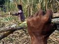 Ratusan Buruh Apel Siaga Jelang Mogok Nasional di 200 Kota