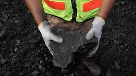 PTBA: Ekspor Batu Bara Tak Terpengaruh Wabah Virus Corona