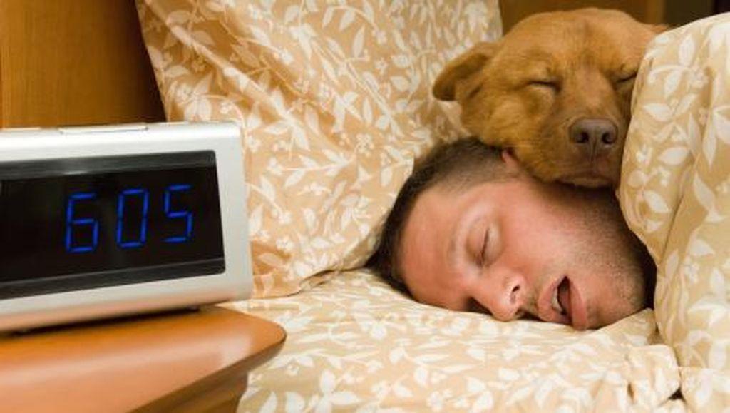 Selalu Ngiler Saat Tidur? Kenali Kemungkinan Penyebabnya