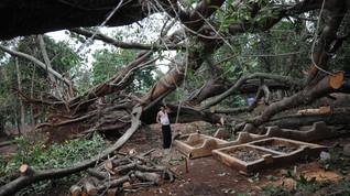 Angin Kencang Melanda Batu, Tempat Wisata Coban Talun Ditutup
