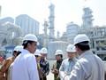 Pemerintah Ingin Kelola 50 Persen Kawasan Industri Lewat BLU