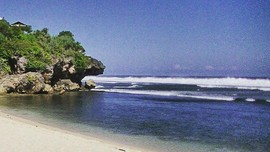 Jelang Libur Lebaran Gunung Kidul Antisipasi Invasi Ubur-ubur