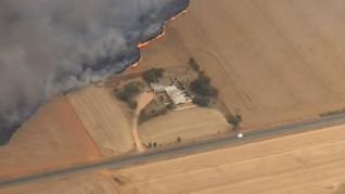 Cuaca Panas Picu Kebakaran Lahan di Australia