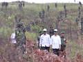 Program Perhutanan Sosial 12,7 Juta Hektare Dipertanyakan