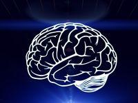 Karena MS bisa menyerang saraf otak secara langsung, proses berpikir, belajar, dan merencanakan sesuatu bisa turut mengalami kendala. (Foto: ilustrasi/thinkstock)