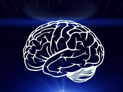 Makna di Balik Desain Otak Manusia yang Terbagi Dua