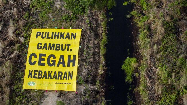 Putusan Hakim atas Kasus Pembakaran Hutan Pengaruhi Investasi