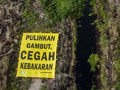 Bara di Hutan Riau