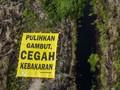 BRG Bantah Tudingan Sumur Bor Fiktif di Kalteng
