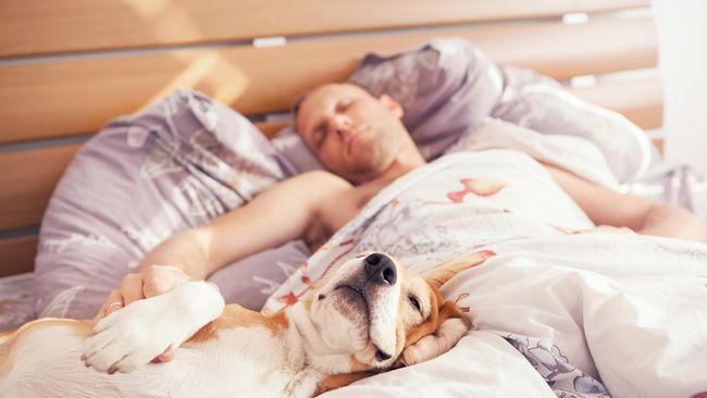 Posisi Tidur Pengaruhi Kesehatan Seseorang