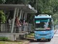 Pantau Bus TransJakarta Kini Bisa Lewat Google Maps
