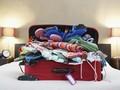 Jurus Jitu Mengisi Koper Sebelum Liburan ke Luar Negeri