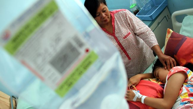 Kasus Meningkat, Indonesia Waspada DBD