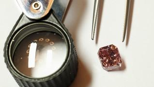 Selundupkan Berlian Rp4,5 M, Pria Malaysia Ditahan di India