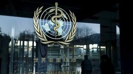 WHO Buat Panel Pelajari Rekayasa Genetika Bayi di China