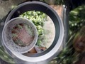 Hindari DBD, Hidup Bersih Jauhi Jentik Nyamuk