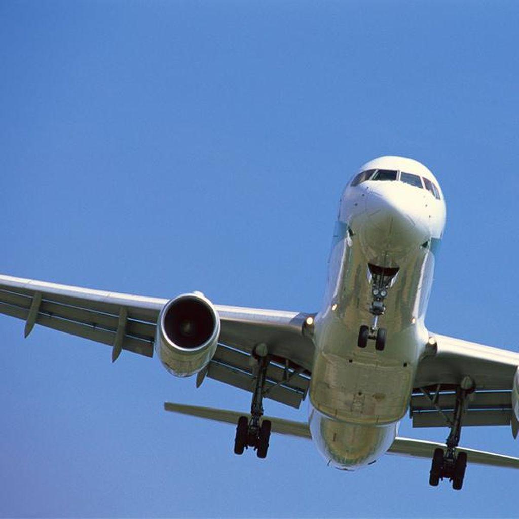 Wanita Jepang Terkena Infeksi Bakteri Langka Saat di Pesawat