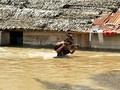 Jaringan Telkomsel di Bima Alami Gangguan Pasca Banjir