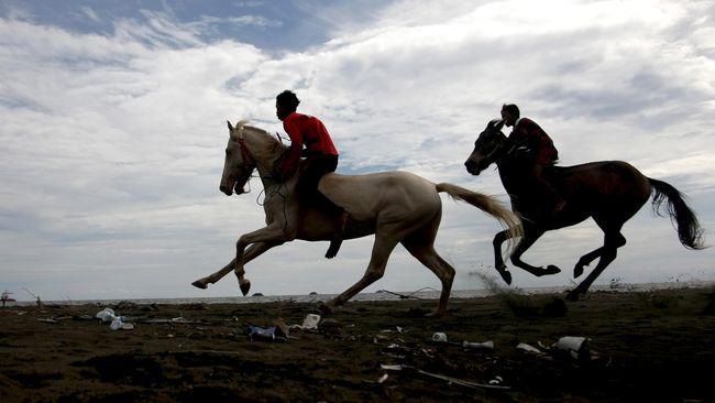 Hobi Berkuda Bisa Kuras Tabungan Hingga Ratusan Juta