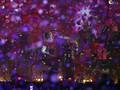 'Everglow,' Lagu Baru Coldplay dengan Suara Muhammad Ali