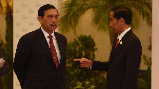 Menko Luhut Anggap Diplomasi Jokowi Ampuh Bebaskan Sandera