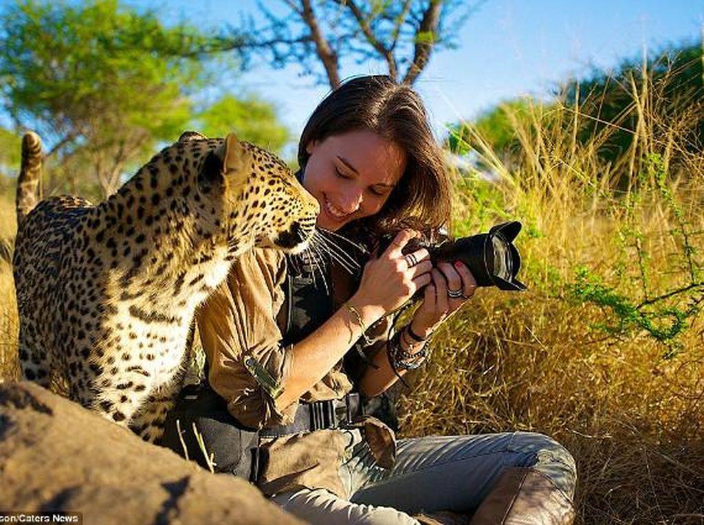 Namanya Shannon Benson asal Afrika Selatan. Dia fotografer profesional yang fokus mengabadikan binatang dan alam liar. Foto: Shannon Benson
