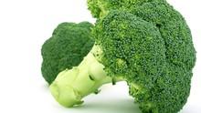 5 Jenis Makanan untuk Tingkatkan Daya Tahan Tubuh