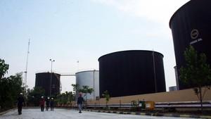 Trump Desak OPEC Kerek Produksi, Harga Minyak Merosot