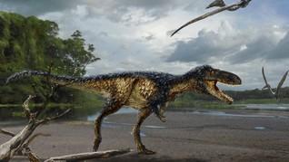 Burung 99 Juta Tahun Ini Hidup Sezaman dengan Dinosaurus