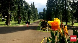 Kebun Raya Bogor Tutup saat <i>May Day</i>