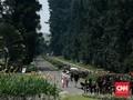 Kebun Raya Bogor Membuka Kembali Taman Akuatik