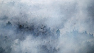 Penegak Hukum Dinilai Belum Paham Hukum Lingkungan