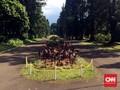 Kebun Raya Bogor Tetap Buka untuk Umum Saat Kunjungan Obama