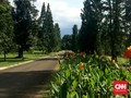 LIPI Keluhkan Terbatasnya Peneliti Flora di Indonesia