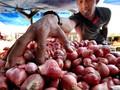Menteri Pertanian Klaim Harga Bawang Merah Mulai Turun