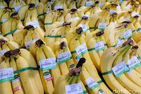 Buah pisang menyimpan kalori yang cukup tinggi yakni 105 kalori per buahnya. Ia juga kaya serat alami, pati, vitamin C, dan potasium. Selain itu, pisang dikenal bisa membuat rasa kenyang lebih lama. (Foto: Thinkstock)