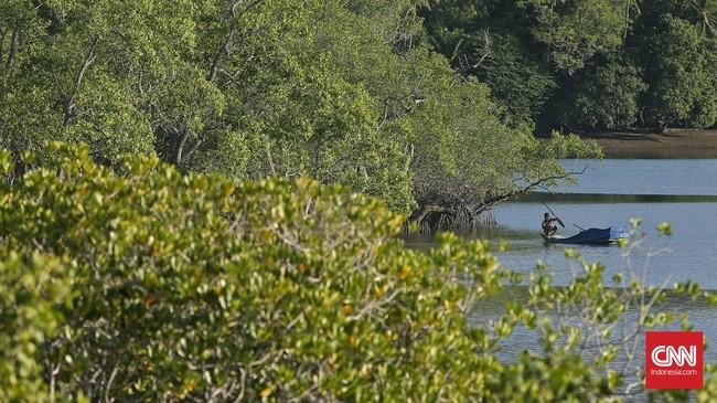 Di Desa Mokantarak, Larantuka, banyak ditemui pemandangan nelayan mencari ikan di area teluk bagian timur Flores itu tiap pagi.(CNN Indonesia/Adhi Wicaksono)